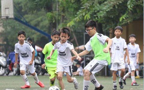 Luật bóng đá sân cỏ nhân tạo 5 người